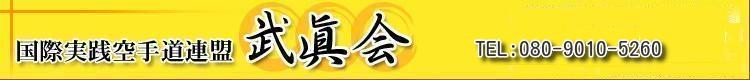 国際実践空手道連盟 =武眞会= 武真会